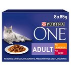 Purina One Adult Meat with Chicken & Beef Pouch