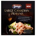 Youngs Canadian Prawns Frozen