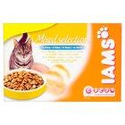 Iams Wet Cat Food Gravy Mixed Selection